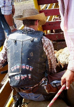 Cowhand mounting bucking bull in chute