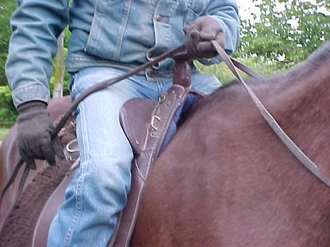 The blades on an Australian Stock Saddle saddle