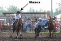 Hazer working with steer wrestler