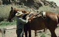 Cowhand rigging a pack saddle
