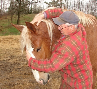 Duane Barrow demonstrates where to put pressure in teaching a horse to lower its head