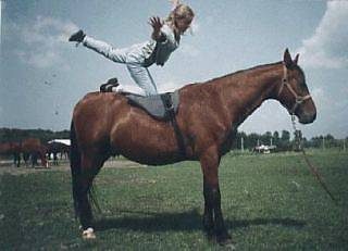 equestrian vaulting moves.