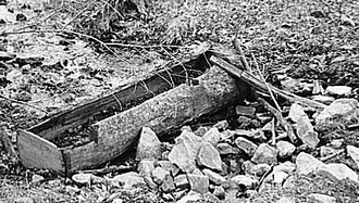 Water trough made of hollowed log on farm near Danby, New York
