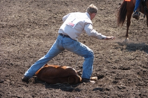 Cowboys In Wranglers