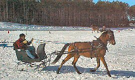 Riders-In-Cahoots sleigh and cutter rally